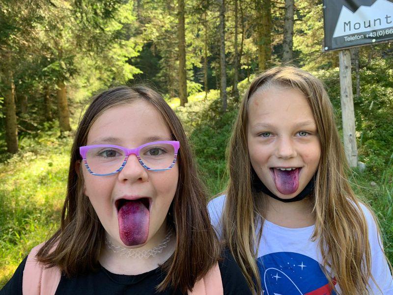 Heidelbeer Zungen